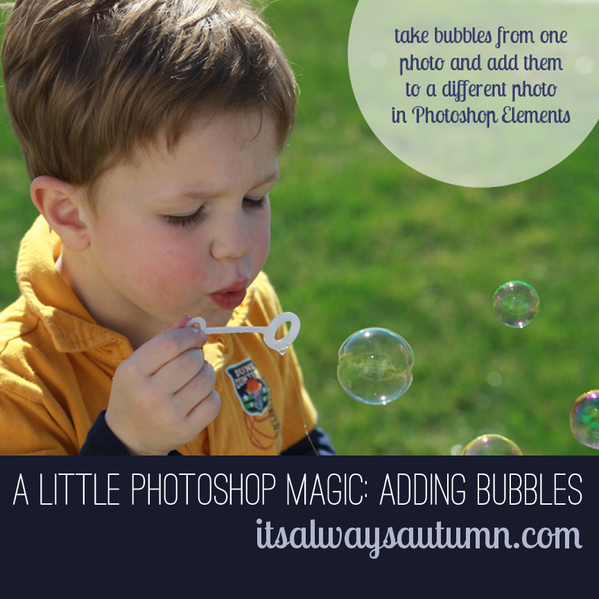 photograph: a little photoshop magic – the bubbles edition
