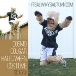 byu cosmo cougar costume