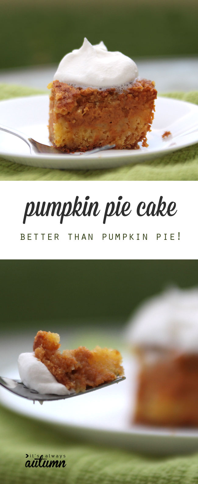 this pumpkin pie cake recipe is so good! it's better than pumpkin pie and easier too - plus it feeds a crowd! hello thanksgiving dinner.