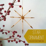lessons from the nativity {star ornament}