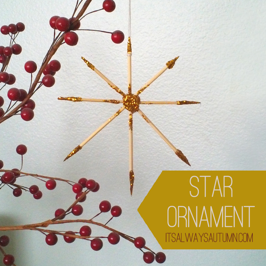 lessons from the nativity {starornament}