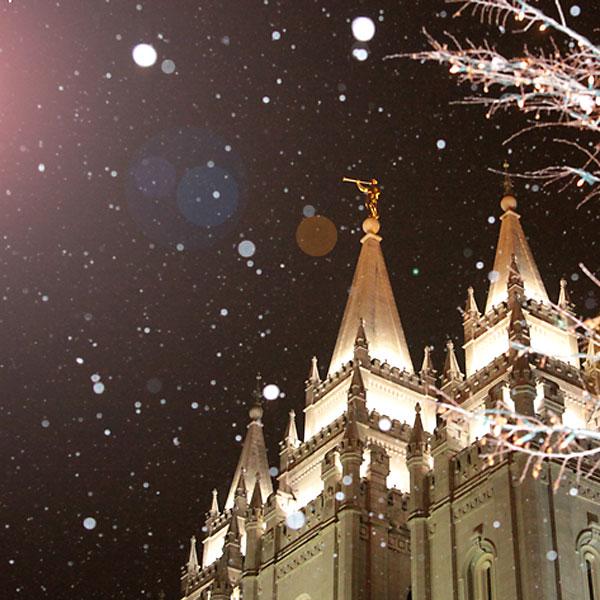 holiday lights phototips