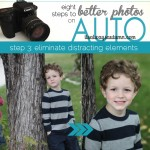eight steps to better photos on auto {step 3: eliminate distractions}