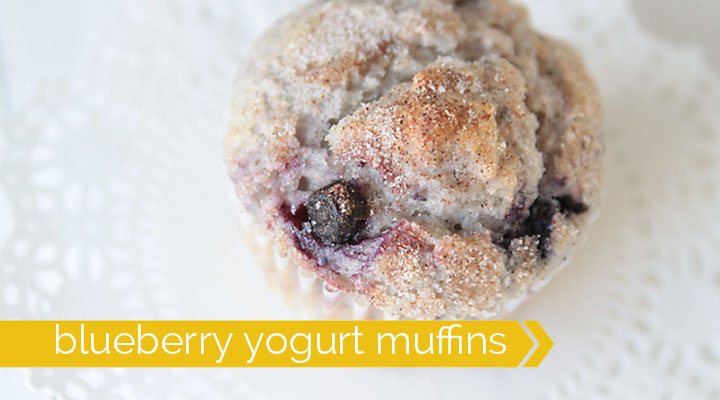 greek yogurt blueberry muffin recipe is as delicious as bakery muffin ...