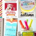 20 cheap, easy, cute & practical teacher appreciation gifts