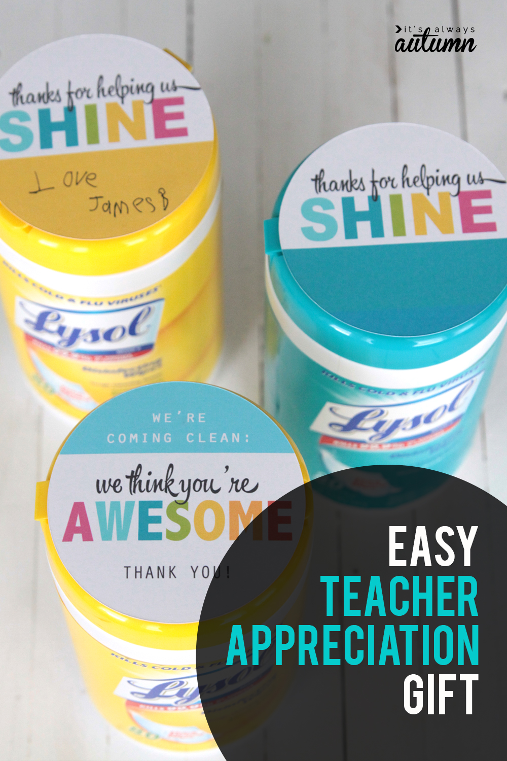 Easy teacher appreciation gift idea: sanitizing wipes. Teachers go through buckets of these! Click through for the printable tags.