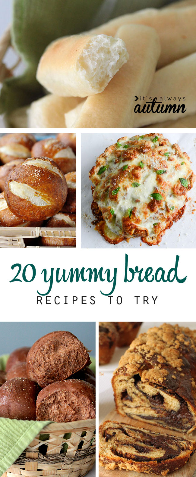20 amazing bread recipes to try - from easy breadsticks to pretzel rolls, pizza bread, and more!
