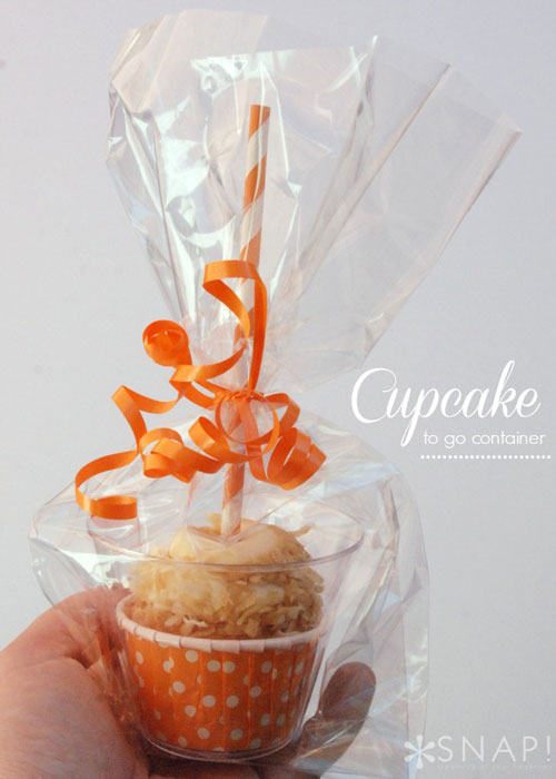 treat-packaging-cookie-DIY-christmas-how-to-package-treats-gift-12