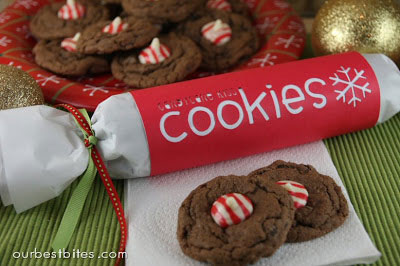 treat-packaging-cookie-DIY-christmas-how-to-package-treats-gift-14