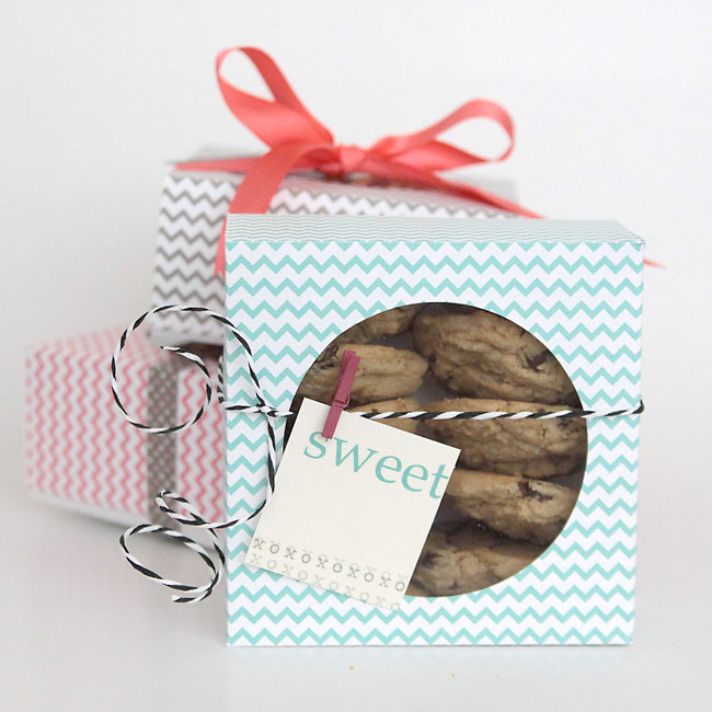 treat-packaging-cookie-DIY-christmas-how-to-package-treats-gift-20