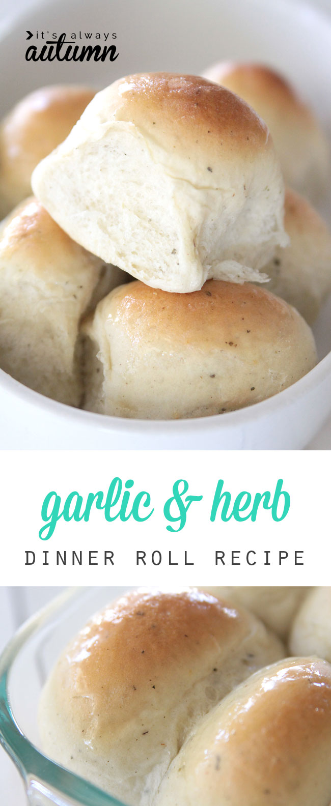 these garlic & herb dinner rolls are amazing! soft and light and flavorful and just plain good. great recipe & step by step photo instructions.
