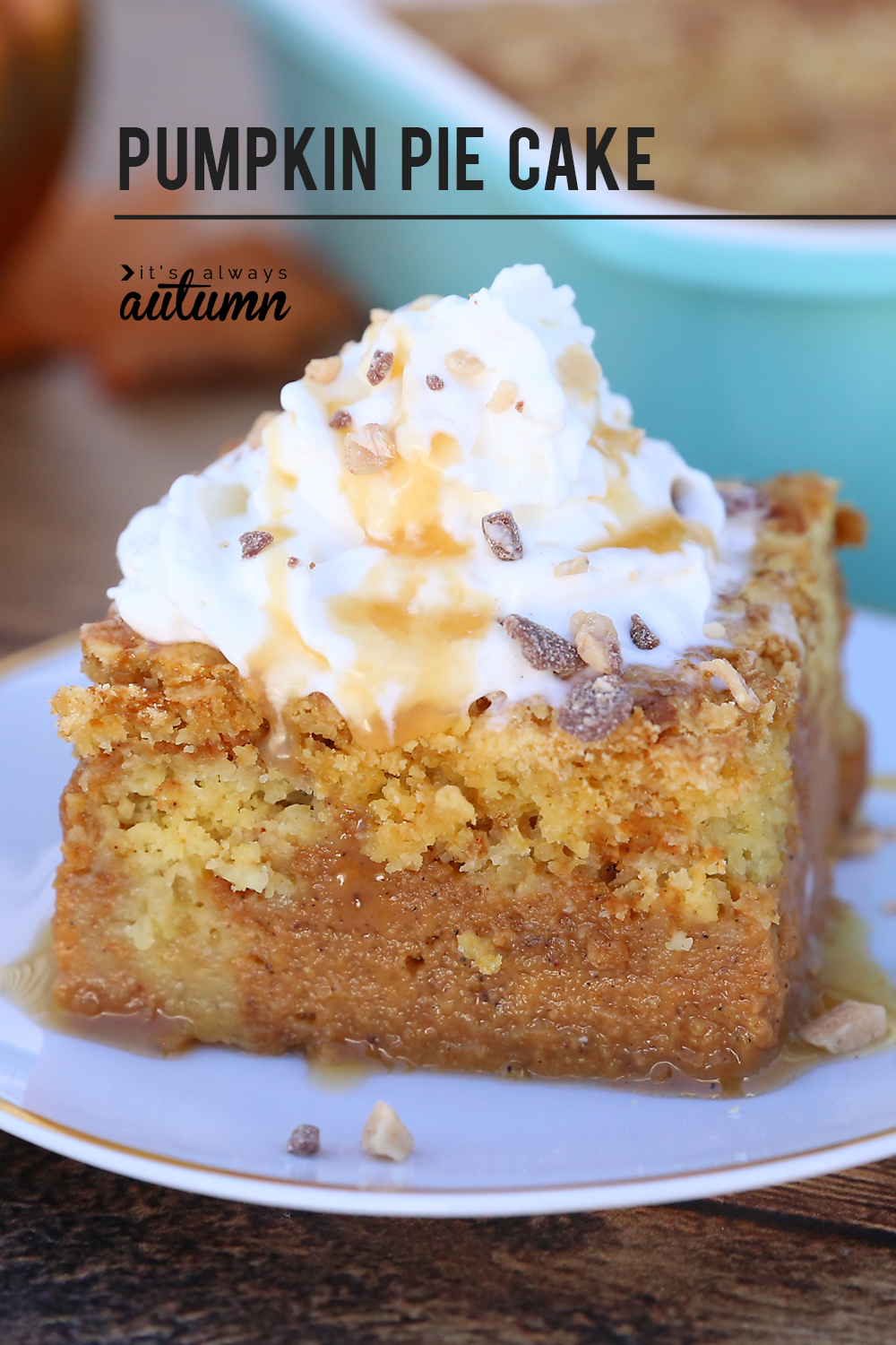 Pumpkin pie cake will be your new favorite pumpkin recipe! Pumpkin pie swirled with buttery cake crumbles - even people who don't like pumpkin pie love this recipe! Plus it feeds a crowd.