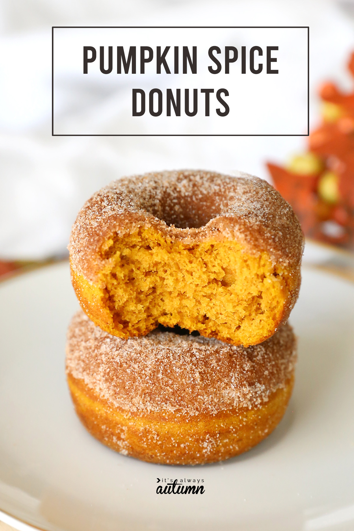Baked pumpkin spice donuts are the perfect fall treat!