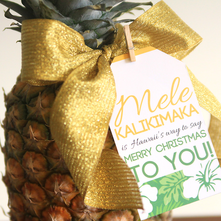 Easy Neighbor Gift Idea Pineapple Cute Tag It S