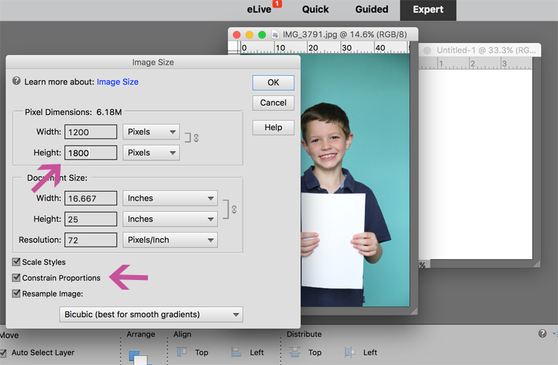 how-to-make-photo-gift-card-holder-teacher-appreciation-end-of-year-gift-photoshop-elements-9