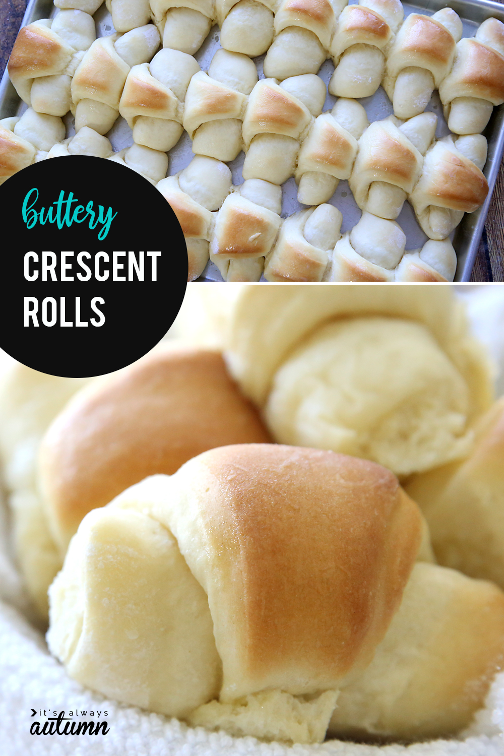 These buttery soft crescent rolls are the best homemade rolls you've ever tasted! Click through for the recipe and a video tutorial.