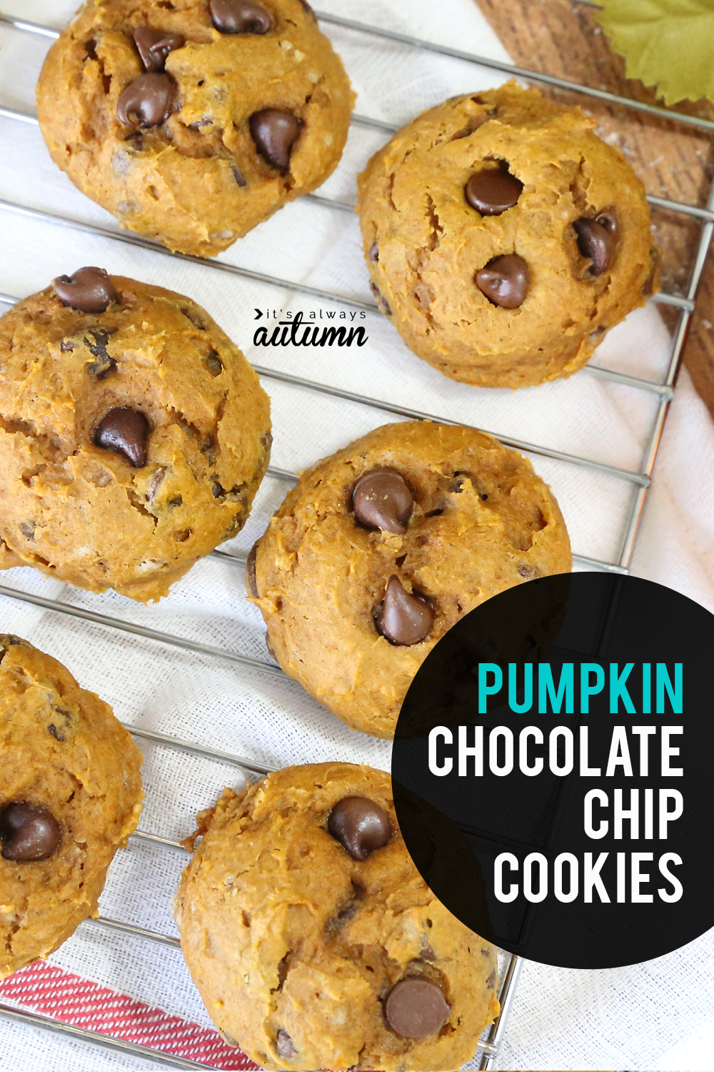 These pumpkin chocolate chip cookies are light, soft, and just plain amazing. Plus they mix up super fast with only five ingredients.