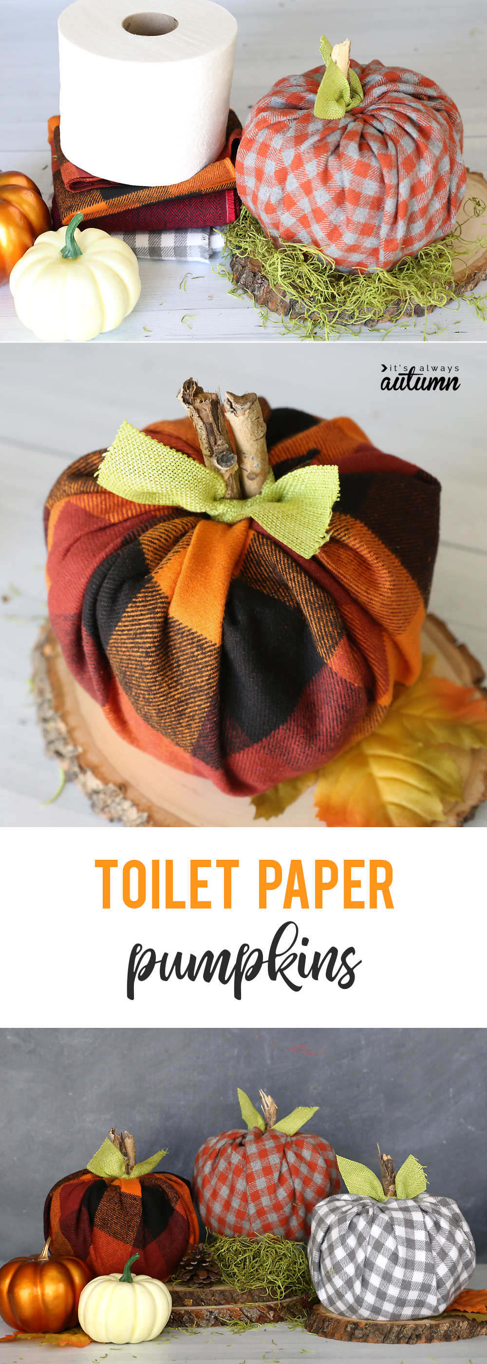 How to make cute plaid pumpkins using toilet paper rolls! It's.