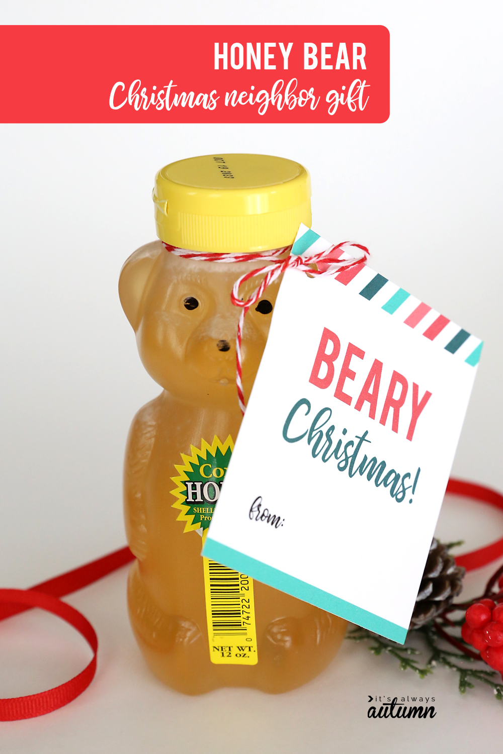 17 easy Christmas neighbor gift ideas with printable tags! Honey neighbor gift idea.