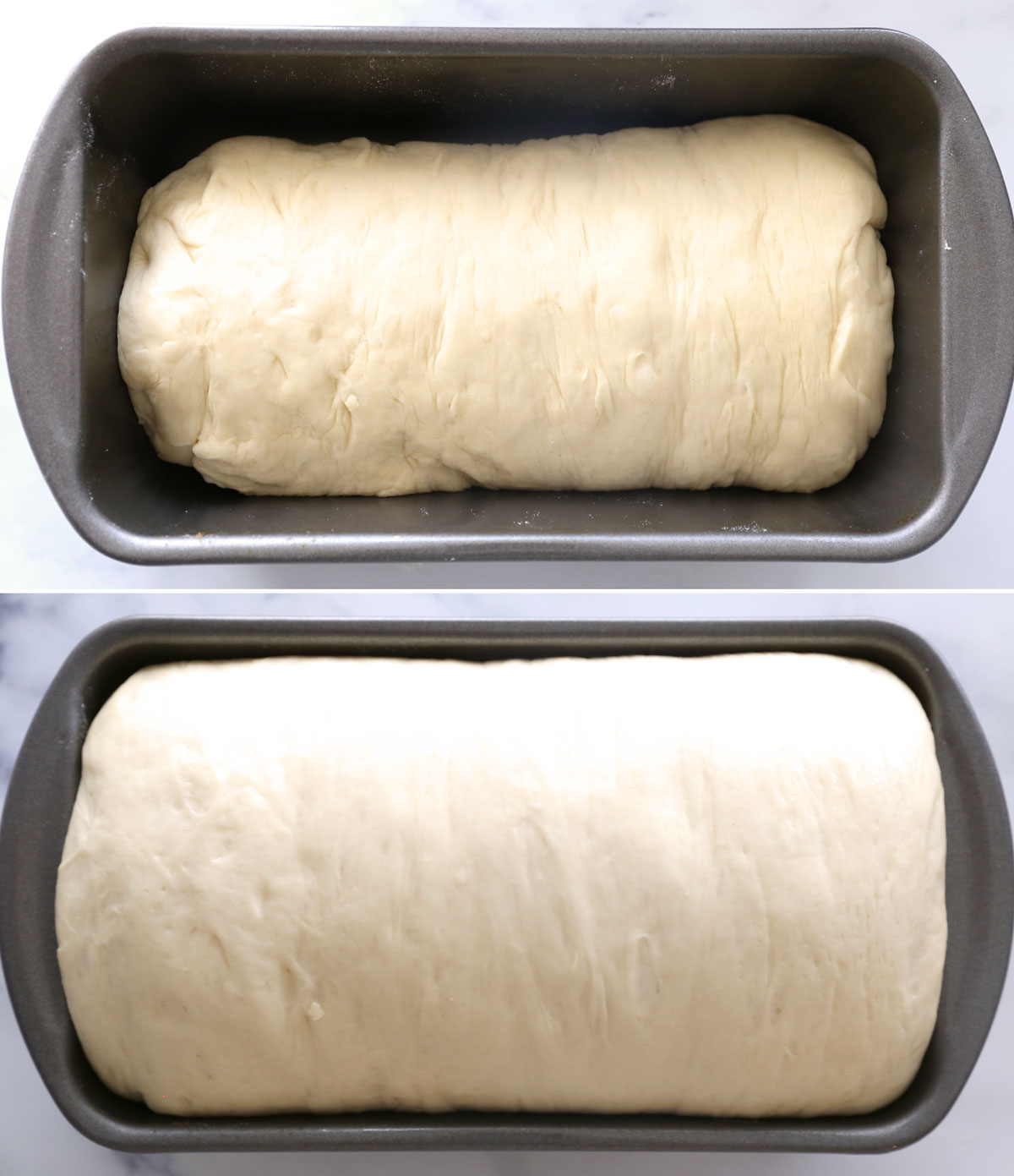 Homemade bread: before and after the second rise
