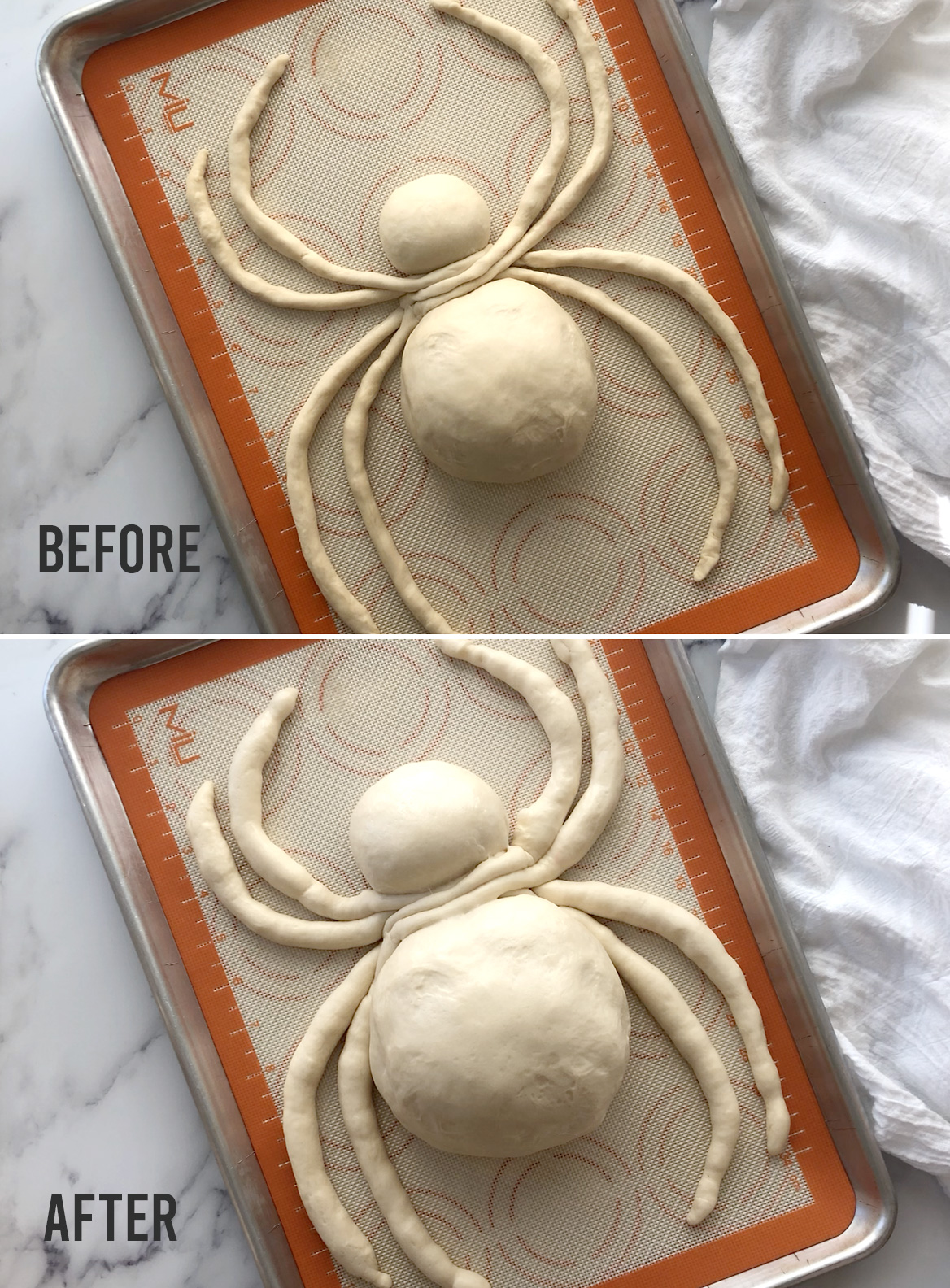 Halloween spider bread: before and after rising