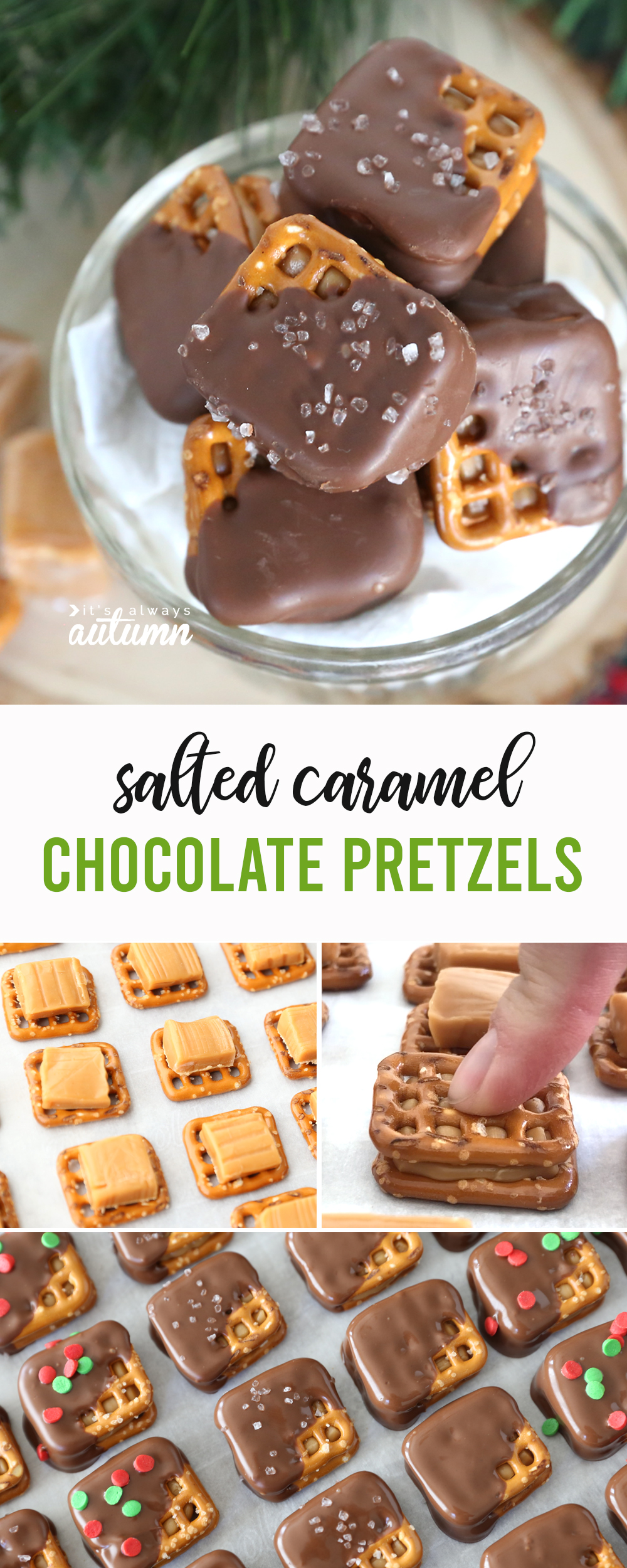 These salted caramel chocolate pretzels are AMAZING! Perfect treat for homemade gifts or Christmas parties.