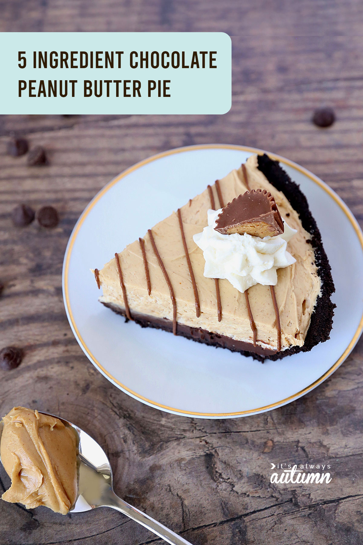 It only takes 5 ingredients and 15 minutes to make this light chocolate peanut butter pie!