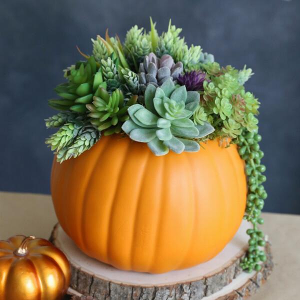 Pumpkin succulent planter centerpiece